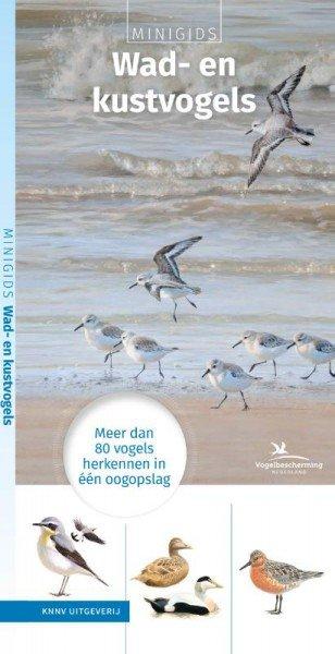 Minigids Wad- en Kustvogels 9789050116916 illustraties van Elwin van der Kolk KNNV   Natuurgidsen Nederland