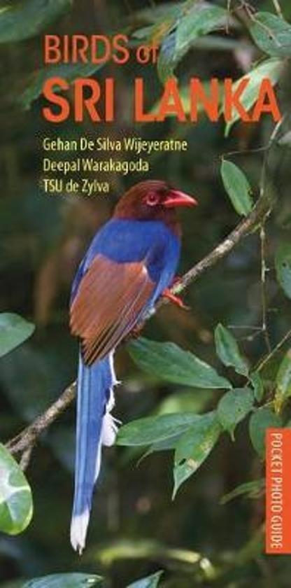 Birds of Sri Lanka 9781472969941 Gehan De Silva Wijeyeratne Deepal Warakagoda Bloomsbury Photographic Guides  Natuurgidsen Sri Lanka