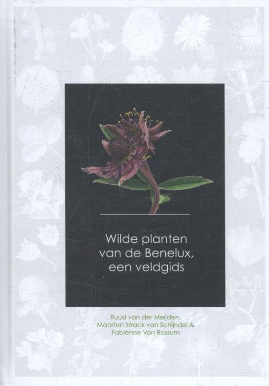Wilde Planten van de Benelux - een veldgids 9789082451139 Ruud van der Meijden, Strack v Schijndel, et.al Agora / Plantentuin Meise   Cadeau-artikelen, Natuurgidsen Benelux