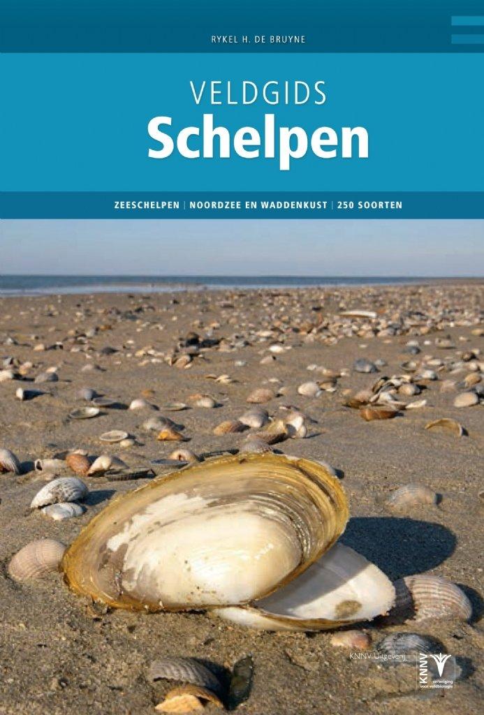 Veldgids Schelpen 9789050116862 Rykel de Bruyne KNNV Veldgidsen  Natuurgidsen Nederland