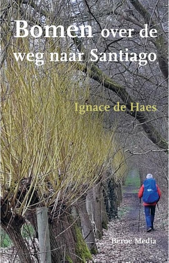 Bomen over de weg naar Santiago | Ignace de Haes 9789089723505 Ignace de Haes Berne Media   Reisverhalen, Santiago de Compostela Europa