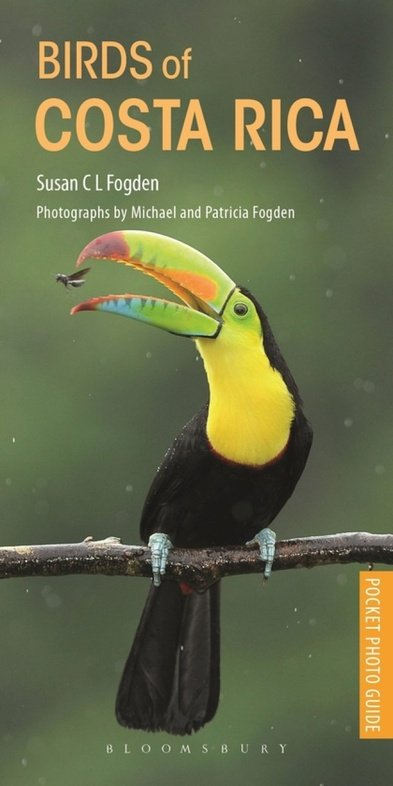 Birds of Costa Rica | vogelgids 9781472971838 Susan C L Fogden Helm   Natuurgidsen Costa Rica