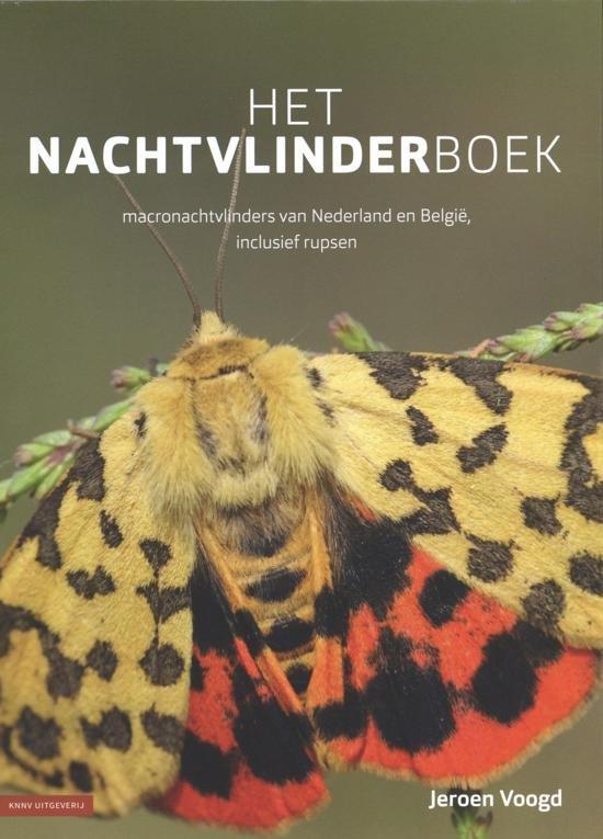 Het nachtvlinderboek 9789050117043 Jeroen Voogd KNNV   Natuurgidsen Benelux
