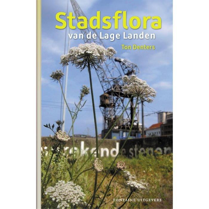 Stadsflora van de Lage Landen 9789059569737 Ton Denters Fontaine   Natuurgidsen, Plantenboeken Nederland