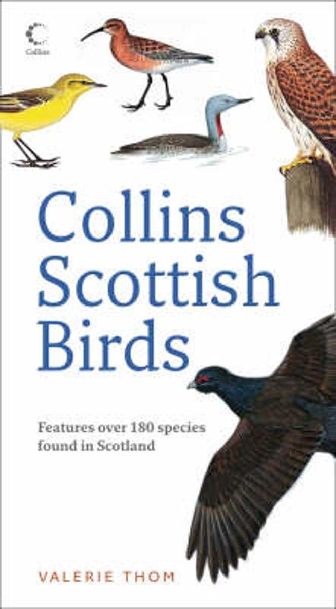 Collins Scottish Birds 9780007270682 Valerie Thom Collins   Natuurgidsen Schotland