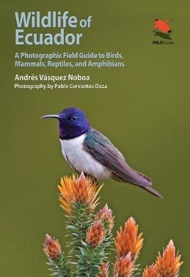 Wildlife of Ecuador 9780691161365 Andres Vazquez Noboa Princeton University Press   Natuurgidsen Ecuador, Galapagos