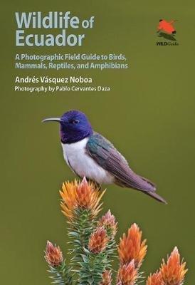 Wildlife of Ecuador 9780691161365 Andres Vazquez Noboa Princeton University Press   Natuurgidsen Ecuador, Galapagos