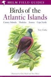 Field Guide To Birds Of Atlantic Islands 9780713660234  A + C Black   Natuurgidsen, Vogelboeken Wereld als geheel