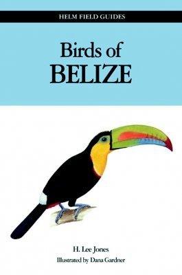 Field Guide to the Birds of Belize 9780713667608 Jones Christopher Helm   Natuurgidsen Yucatan, Guatemala, Belize
