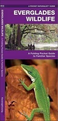 Everglades Wildlife 9781583552551  Waterford Press   Natuurgidsen Florida