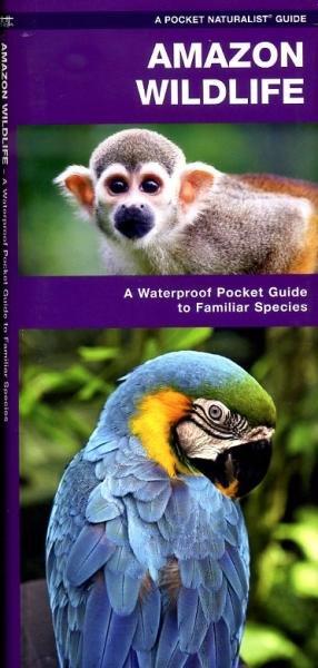 Amazon wildlife 9781583557174  Waterford Press   Natuurgidsen Brazilië
