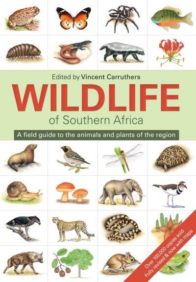 The wildlife of South Africa 9781775843535  Struik   Natuurgidsen Zuidelijk-Afrika