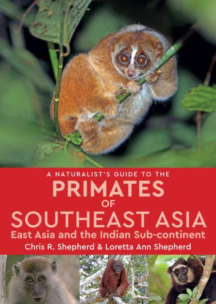 A Naturalist's Guide to the Primates of Southeast Asia 9781909612242  John Beaufoy Publishing Ltd   Natuurgidsen Zuid-Oost Azië