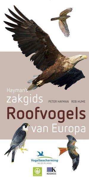 Zakgids Roofvogels van Europa 9789021564906 Hayman Tirion Tirion Natuur  Natuurgidsen Europa
