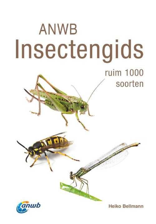 ANWB Insectengids 9789021569031 Heiko Bellmann Kosmos   Natuurgidsen Reisinformatie algemeen