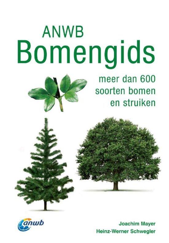 ANWB Bomengids van Europa 9789021569048 Joachim Mayer ANWB   Natuurgidsen, Plantenboeken Europa