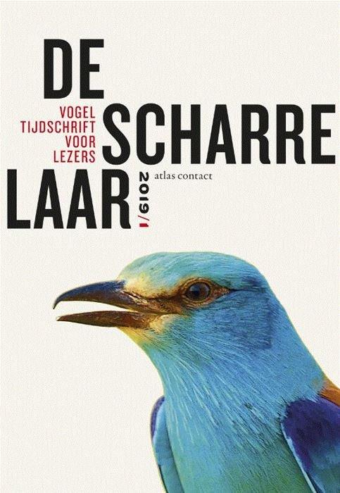 De scharrelaar - 2019/1 9789045038285  Atlas-Contact   Natuurgidsen, Reisverhalen, Vogelboeken Reisinformatie algemeen