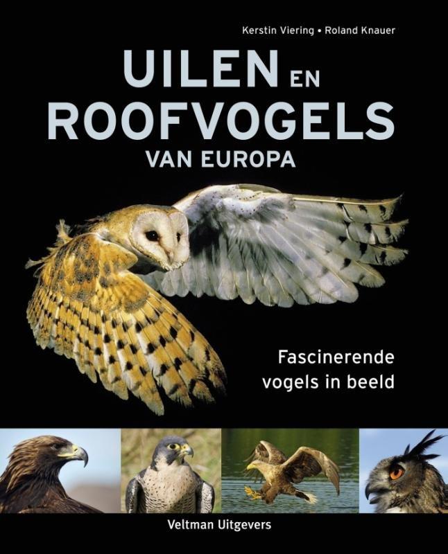 Uilen en roofvogels van Europa 9789048313136  Veltman   Natuurgidsen, Vogelboeken Europa