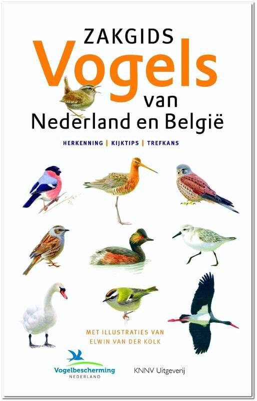 Zakgids vogels van Nederland en België 9789050115810 Ger Meesters, Luc Hoogenstein, Jip Louwe Kooijmans KNNV   Natuurgidsen Benelux, Nederland