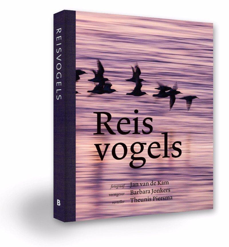 Reisvogels 9789056153816 Theunis Piersma, Jan van de Kam Bornmeer   Natuurgidsen, Vogelboeken Wereld als geheel