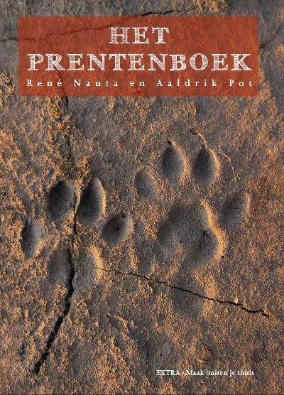 Het Prentenboek 9789082453812 René Nauta, Aaldrik Pot Kleine Uil   Natuurgidsen Europa