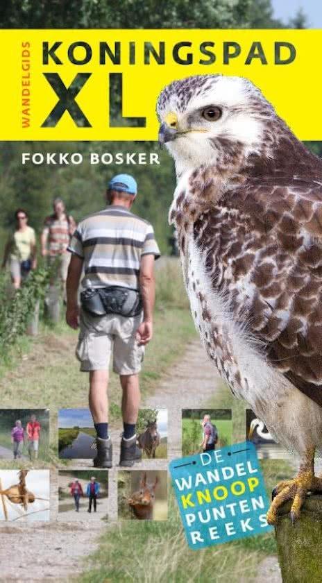 Koningspad XL 9789460224546 Fokko Bosker LM Publishers Wandelknooppuntenreeks  Meerdaagse wandelroutes, Wandelgidsen Friesland