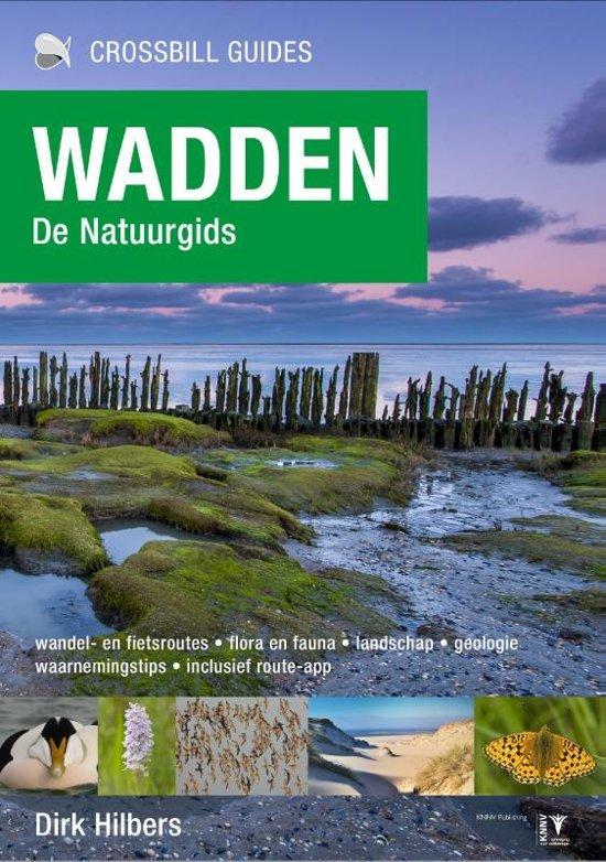 Wadden - de natuurgids | Dirk Hilbers 9789491648151  Crossbill Guides Foundation / KNNV   Cadeau-artikelen, Natuurgidsen Waddeneilanden en Waddenzee